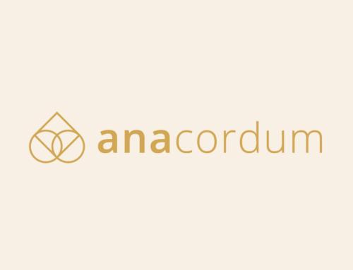 Prenova podobe AnaCordum